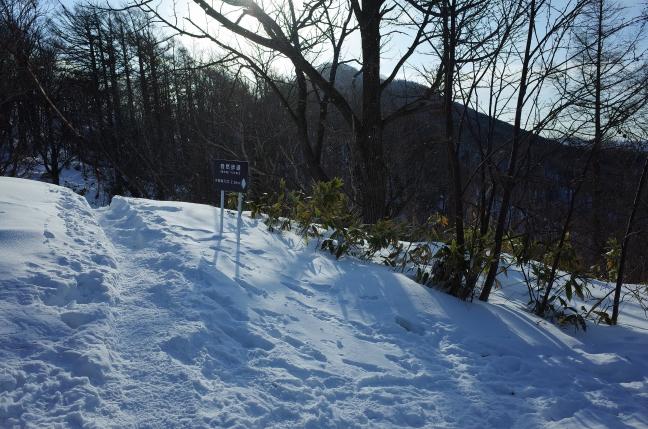 T6分岐から小林峠まで2.5kmのアップダウン