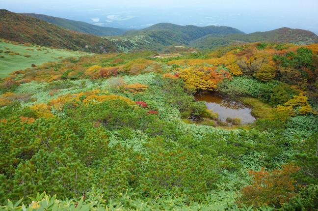 那須岳の紅葉