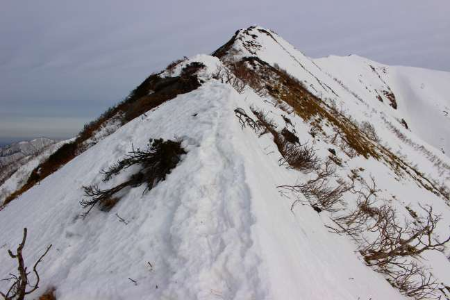 トヨニ岳主稜線