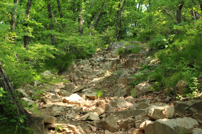 伽倻山登山道