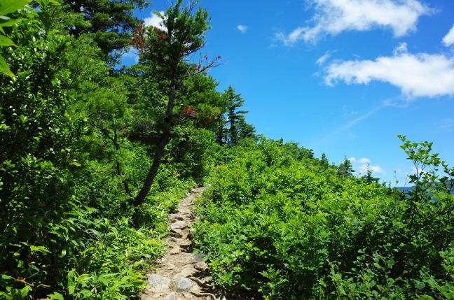 下台倉山からの稜線