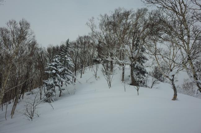 百松沢山から峰越への稜線