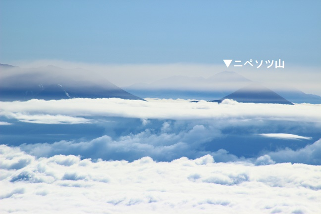 芦別岳からニペソツ山