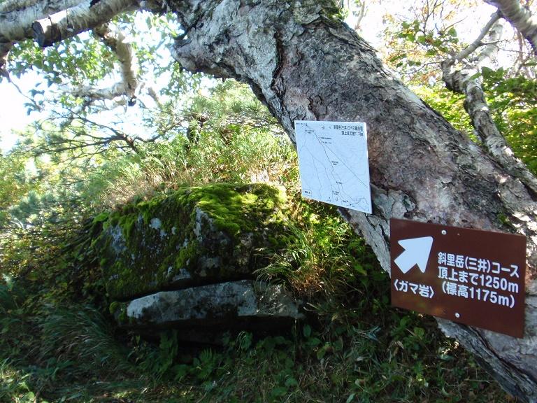 斜里岳ガマ岩