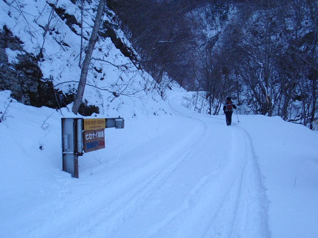 ピセナイ林道