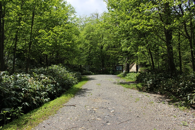 16の沢林道