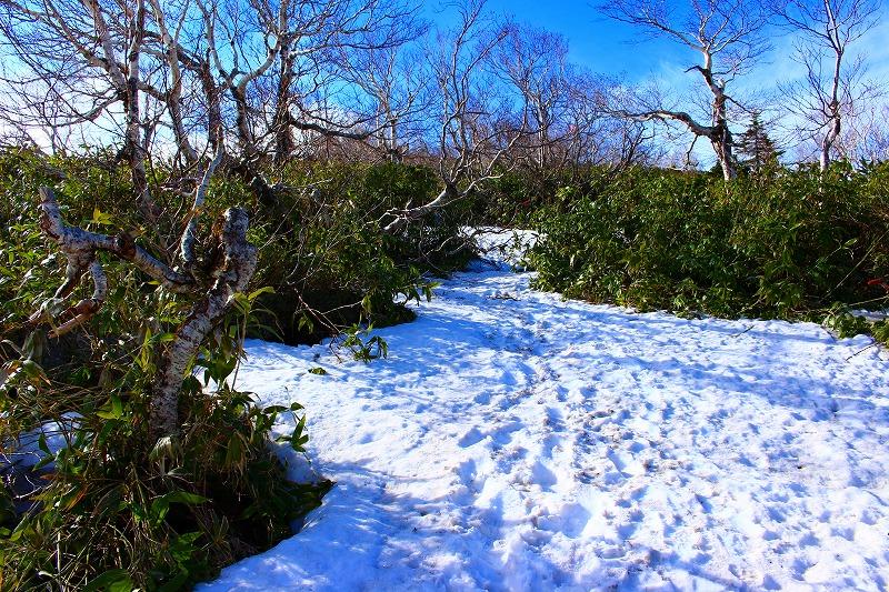 札幌岳山頂付近