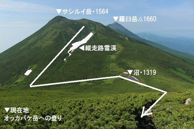 オッカバケ岳