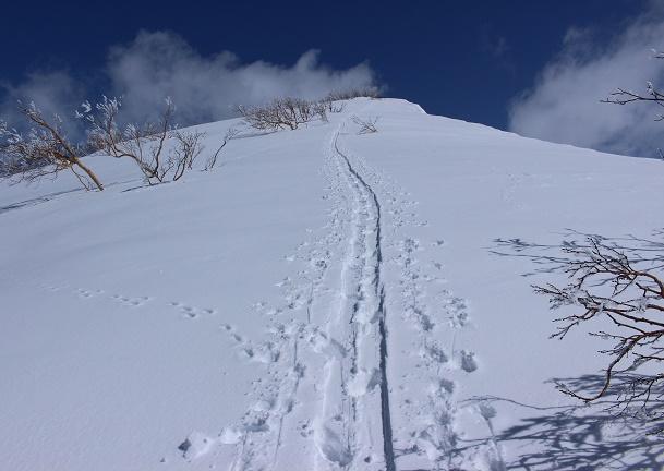 【浜益御殿・浜益岳・雄冬山】4月の残雪期にこの3山をスノーシューで日帰りできるだろうか?