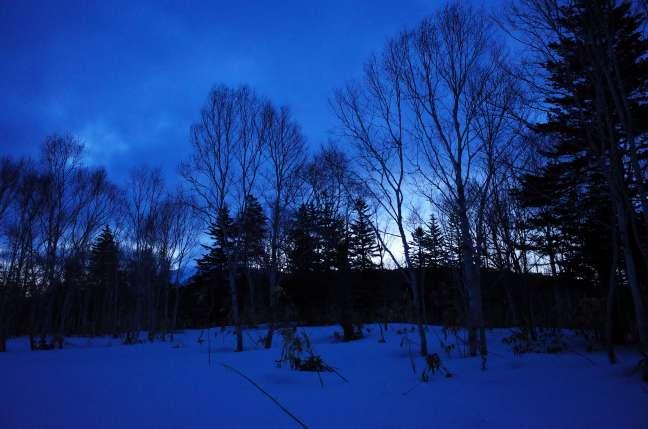 夜明けの雪原