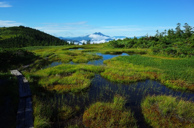 会津駒ヶ岳から見た燧ヶ岳