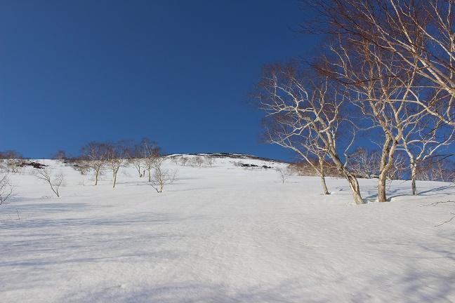 下ホロカメットク山