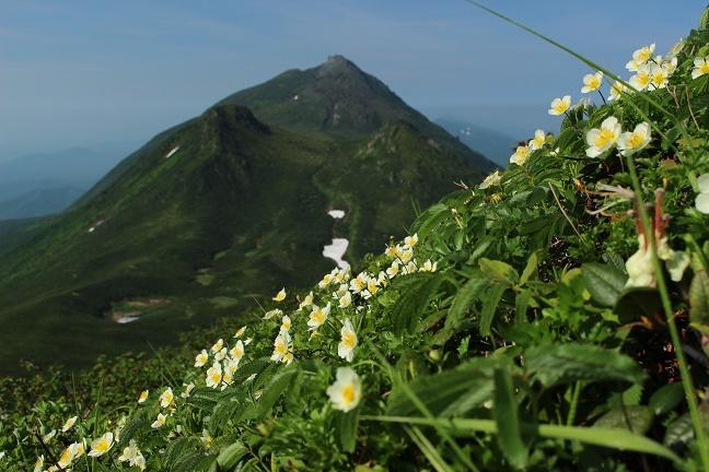 サシルイ岳
