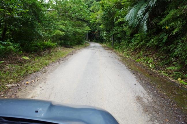 嘉津宇岳登山口への道路