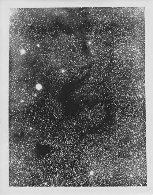 "Der Dunkelnebel Barnard 72 (aka  ""S"" oder ""Snake Nebula""), fotografiert mit dem Mt. Wilson 60-inch Teleskop am 4 Juli 1921"