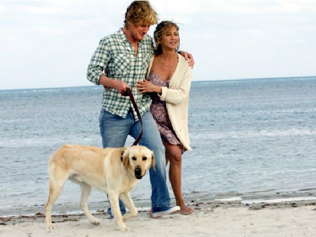 マーリー 世界一おバカな犬が教えてくれたこと( MARLEY & ME 2008年アメリカ)