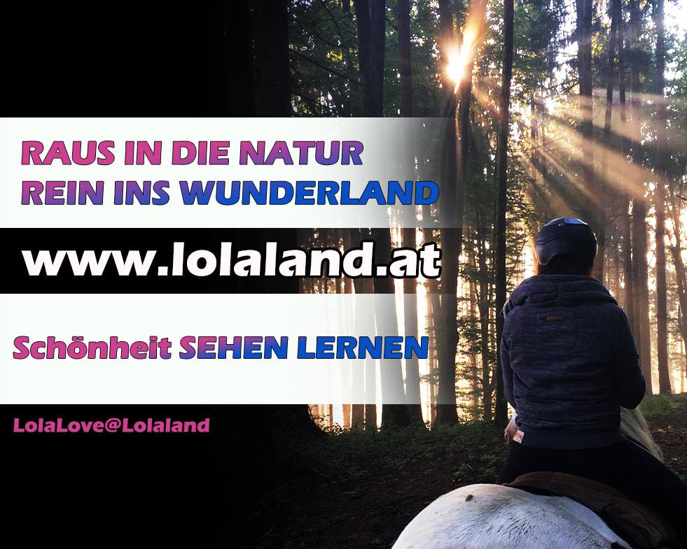 Raus in die Natur! Rein ins Wunderland!