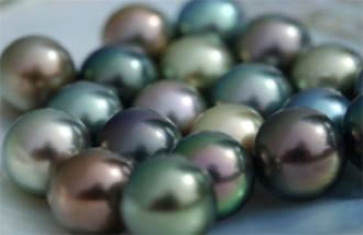 Schwarze Perlen, schöne Souveniers von diesen Inseln