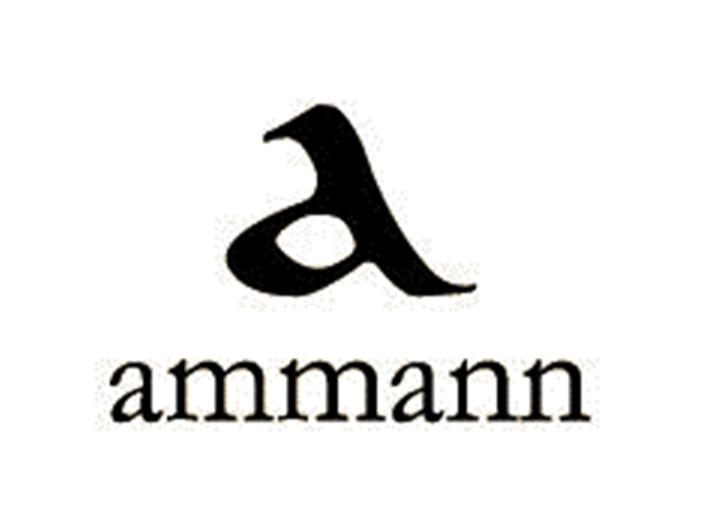 Logo Ammann-Verlag