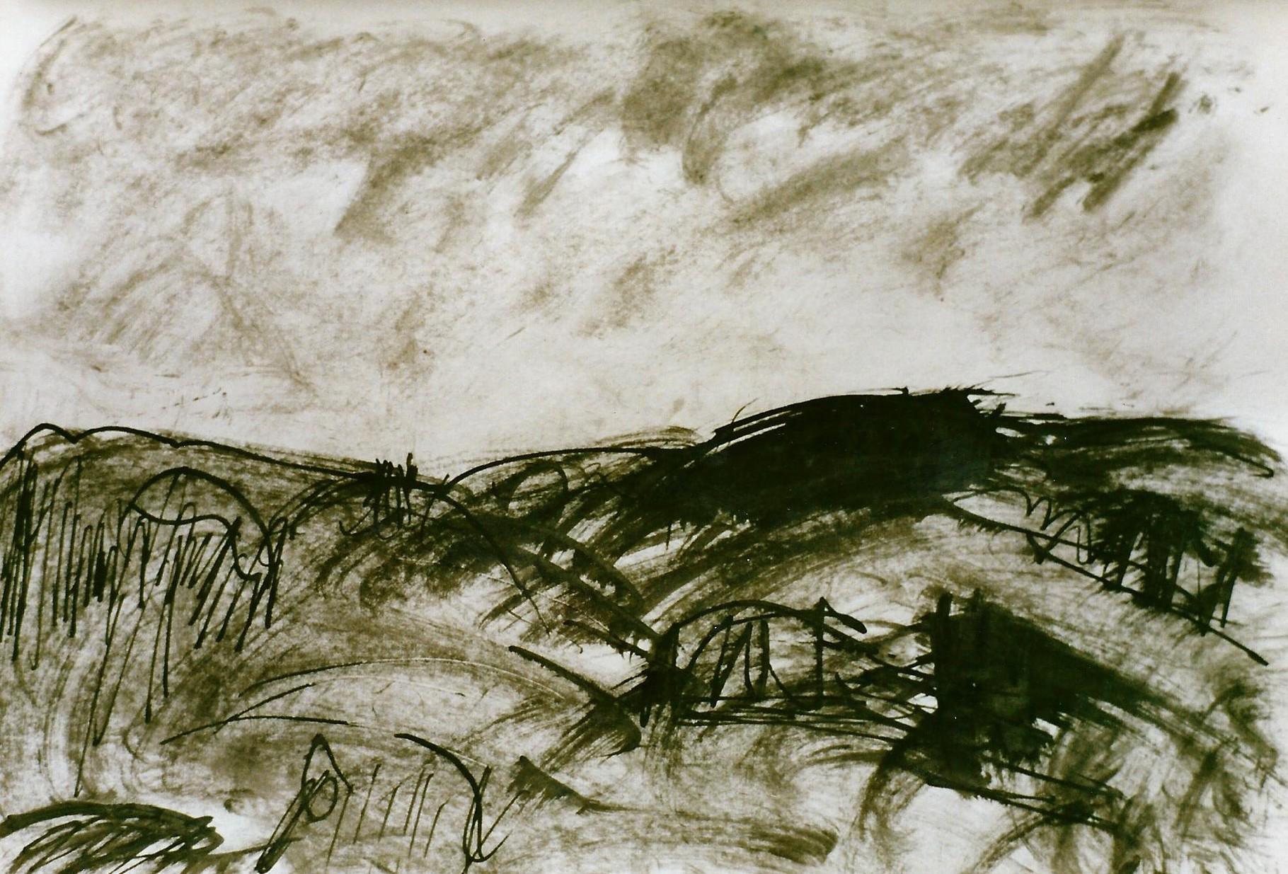 Pedro Meier Multimedia Artist – Zyklus von Federkiel-Zeichnungen (No. I) – Chinesische Sepia Tinte auf Papier – 30x21 cm – 1996 – Foto © Pedro Meier/ProLitteris