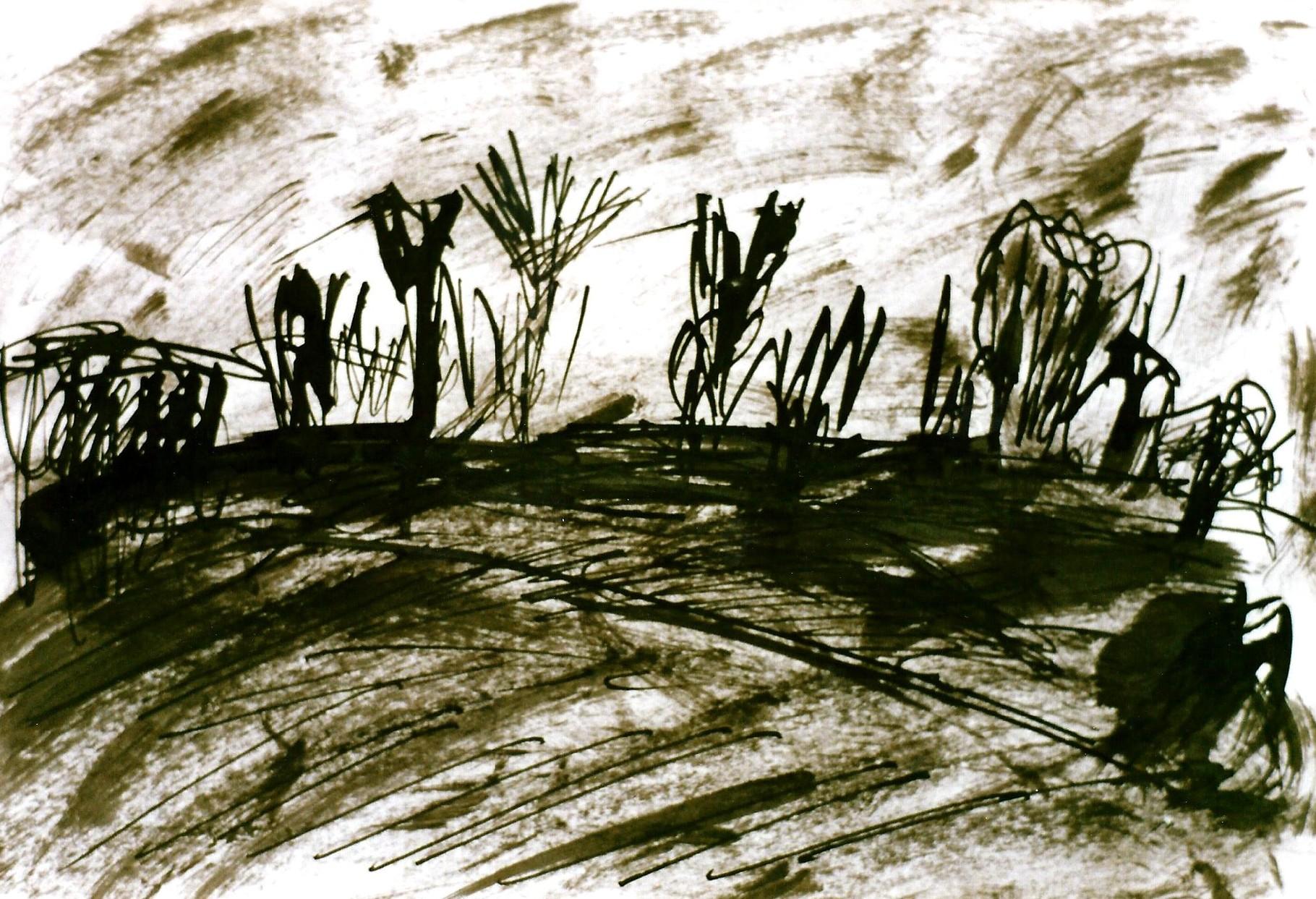 Pedro Meier Multimedia Artist – Zyklus von Federkiel-Zeichnungen (No. III) – Chinesische Sepia Tinte auf Papier – 30x21 cm – 1996 – Foto © Pedro Meier/ProLitteris