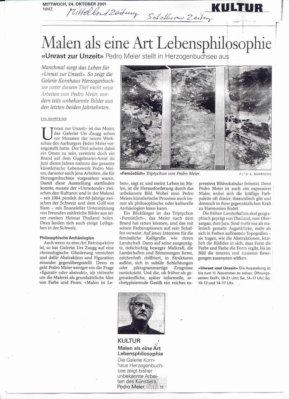 Galerie Kornhaus Herzogenbuchsee – Presse: »AZ Solothurner Zeitung«, »AZ Mittelland Zeitung« (Eva Buhrfeind): Pedro Meier »Malen als eine Art Lebensphilosophie« – »Unrast zur Unzeit« – (Atelierbrand Roggwil-Wynau, Gugelmann Areal) – VISARTE