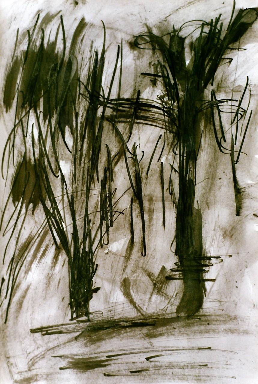 Pedro Meier Multimedia Artist – Zyklus von Federkiel-Zeichnungen (No. VI) – Chinesische Sepia Tinte auf Papier – 30x21 cm – 1996 – Foto © Pedro Meier/ProLitteris
