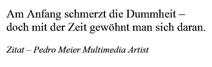 Zitat – Pedro Meier – »Am Anfang schmerzt die Dummheit – doch mit der Zeit gewöhnt man sich daran.« – © Pedro Meier Multimedia Artist / ProLitteris – Gerhard Meier-Weg Niederbipp