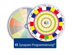 Alpha-Synapsen-Programmierung® | Verbundensein | Johanna Wettstein