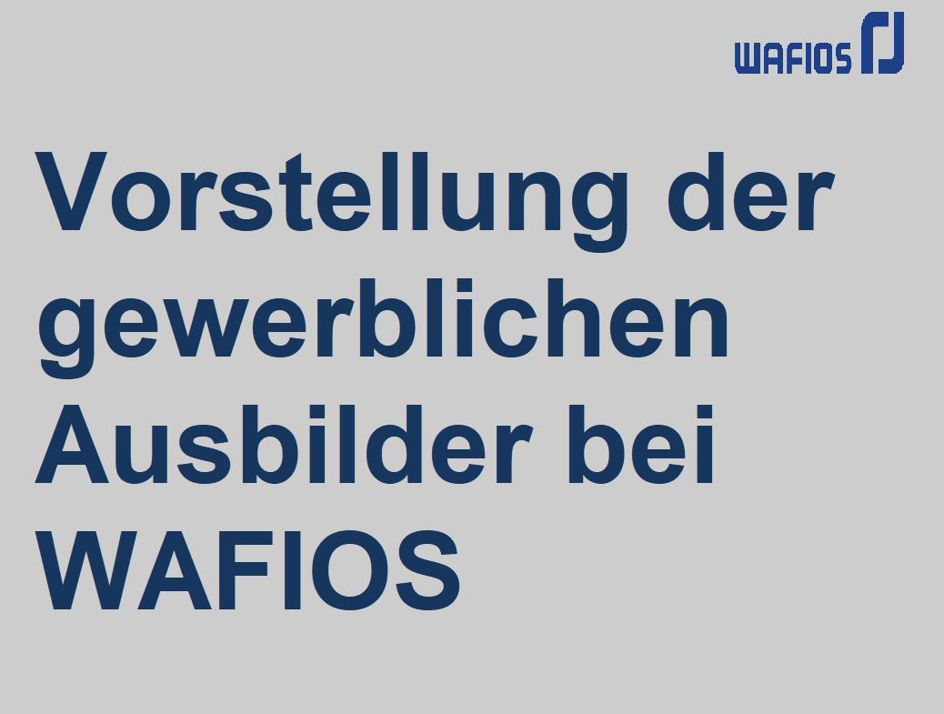 Vorstellung der gewerblichen Ausbilder bei WAFIOS