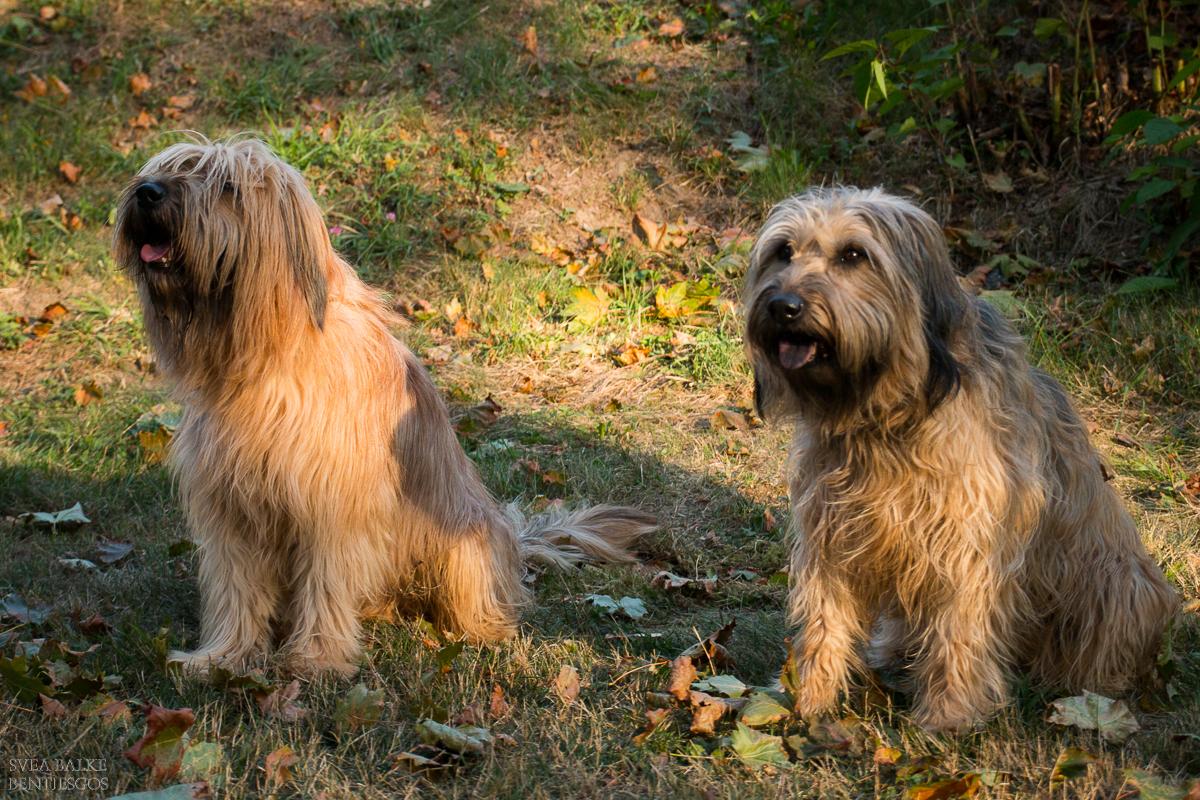 Sohn und Mama - Fjello und Aila