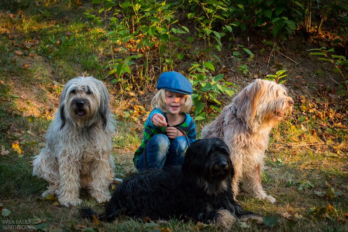 Mein kleiner Held mit Benni, Lili und Maja