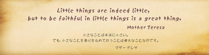 小さなことは本当に小さい。でも、小さなことを真心を込めて行なうことは偉大なことなのです。 マザーテレサ