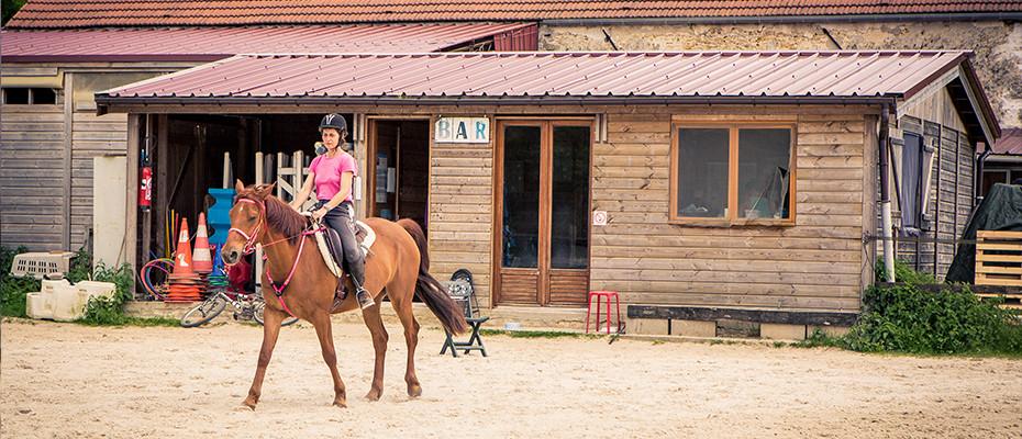 L'Arche d'Ury le pension pour votre cheval en pré-abri ou en pré-box