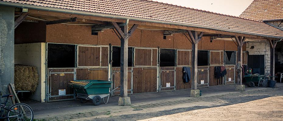 Pension chevaux Seine et Marne 77