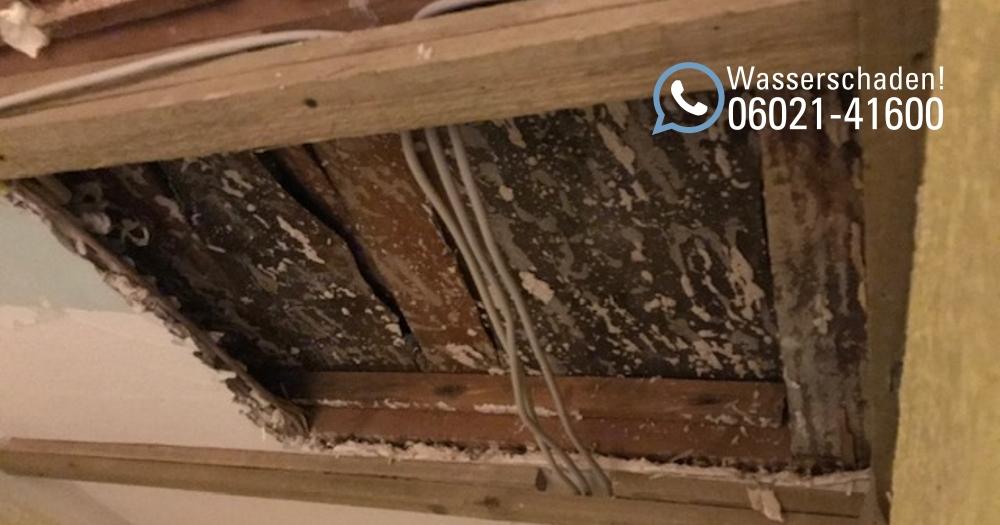 Rohrbruch, Reparatur und Remontage: Wasserschadensanierung in Aschaffenburg