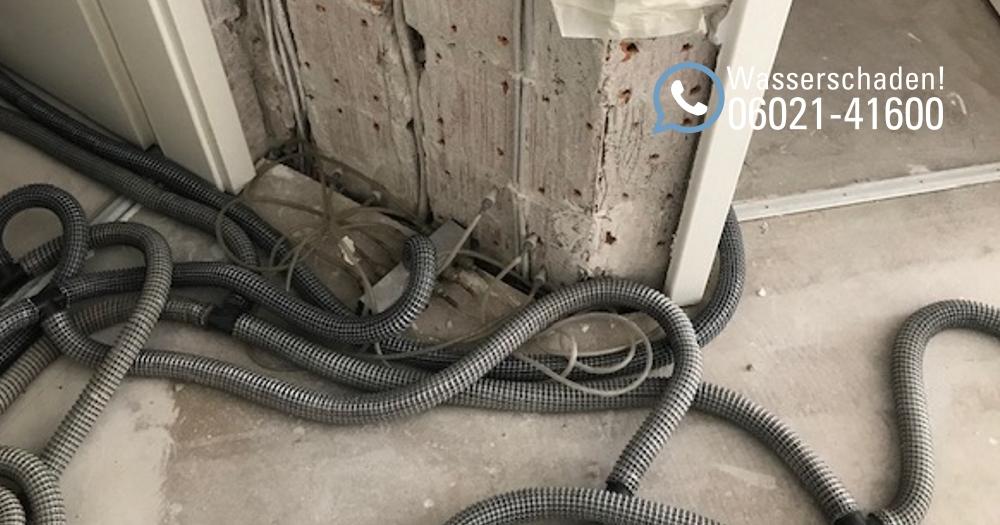 Was tun bei einem Wasserschaden? Wasserrohrbruch in einer Eigentumswohnung in Aschaffenburg / Leckortung, Rückbau, Trocknung und Wiederherstellung