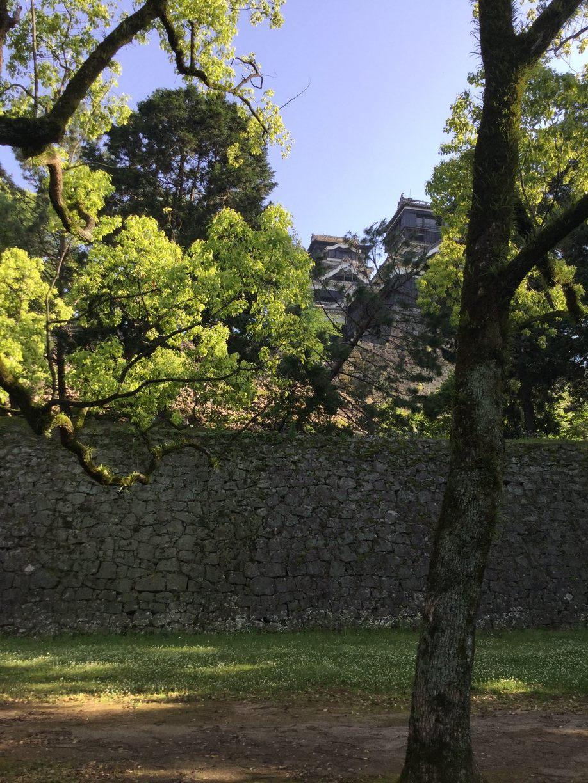 ようやく熊本城が、姿を見せてくれました。踏ん張っています。ー 場所: 熊本県 熊本市