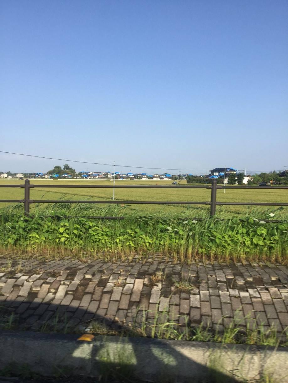 御船町から熊本市に向かう道中の、車窓から。屋根に青いビニールシートがかかる家が点在しています。ー 場所: 熊本県 上益城郡