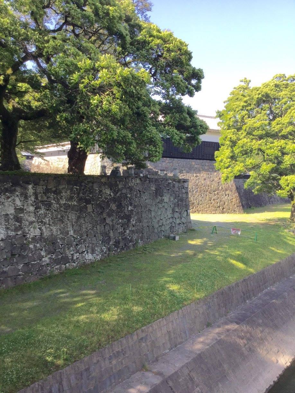 報道に反して、熊本城の石垣の大部分は、しっかり踏ん張っていますよ。ー 場所: 熊本県 熊本市