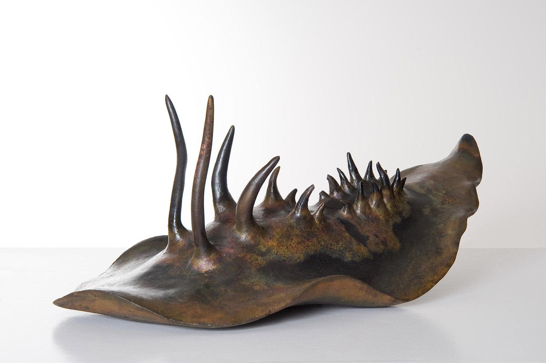 Nudibranch, Keramik (Raku), 22/22/52 cm