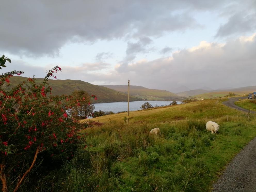 Idylle auf dem Heimweg, Carbost, Isle of Skye
