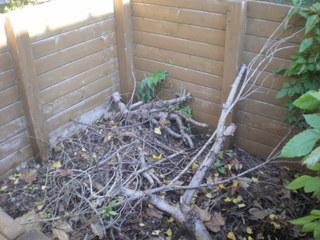 落ち葉溜め 清掃前 残念ながら枝が混在していました