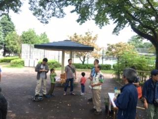 善福寺川緑地 自然観察会