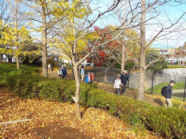 情報大近くの御成台公園の紅葉