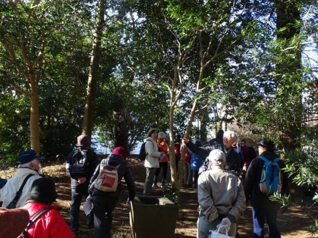 亀崎の森を歩く