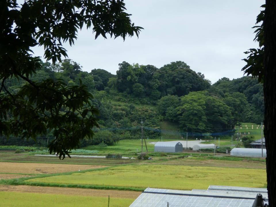 本佐倉城遺跡