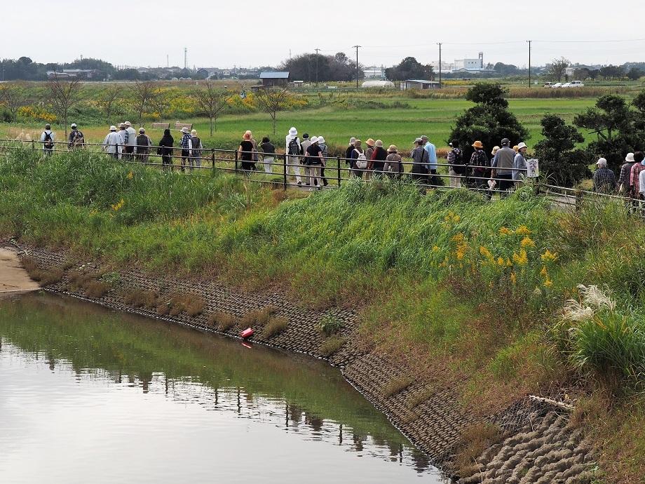 作田川沿い