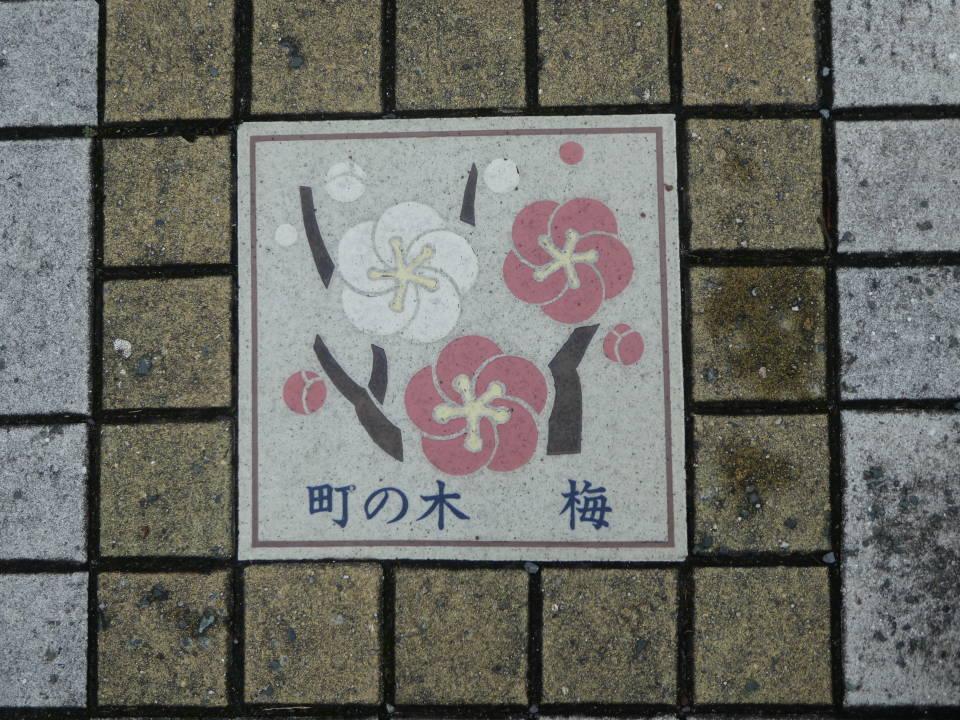 ②酒々井の町の木は「梅」 マンホールにも梅の絵が