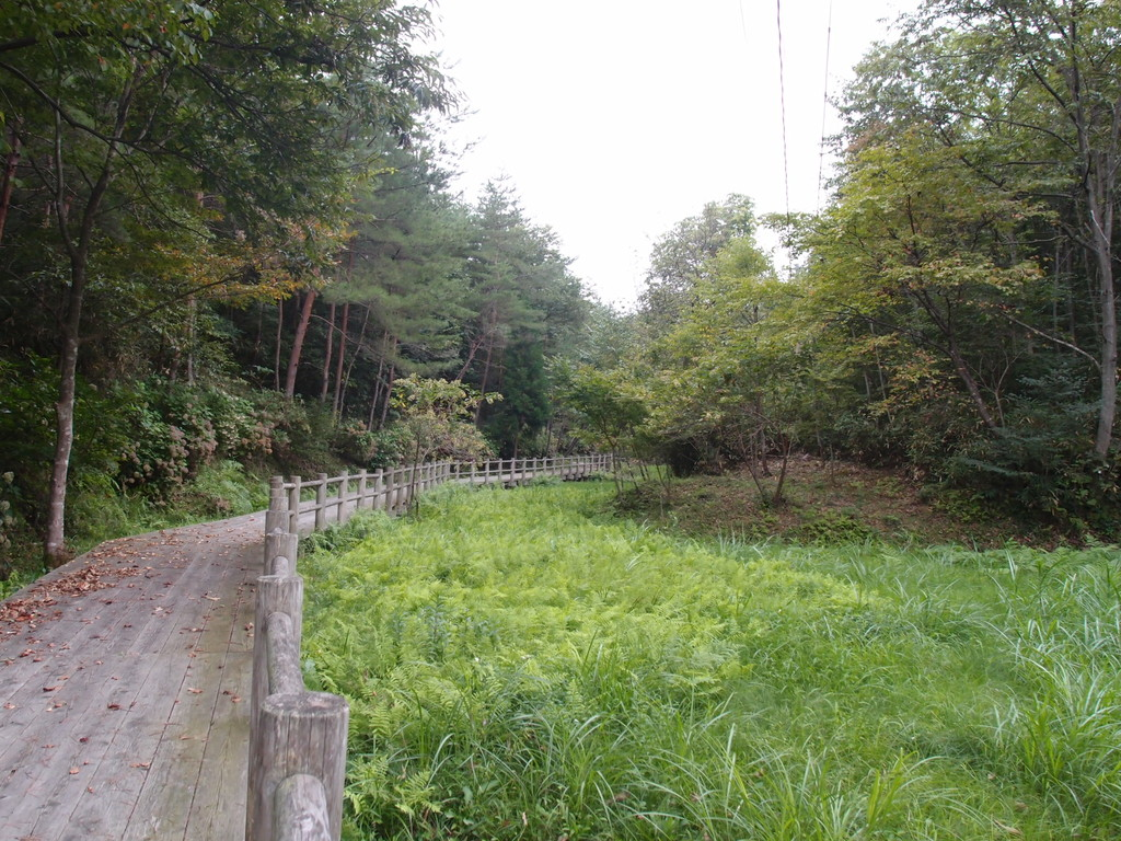 Walking Trail to Motsuji-Temple